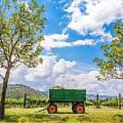 Green Wagon And Vineyard Art Print