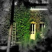 Green Window Art Print