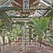 Greenhouse Splendor Art Print