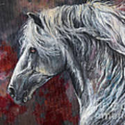 Grey Andalusian Horse Oil Painting 2013 11 26 Art Print