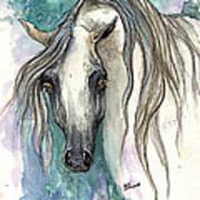 Grey Arabian Horse 2013 11 26 Art Print