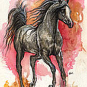 Grey Arabian Horse 2014 01 12 Art Print