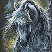 Grey Arabian Horse Oil Painting 2 Art Print