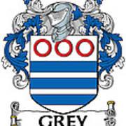 Grey Coat Of Arms Irish Art Print