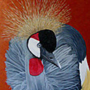 Grey Crowned Crane Art Print