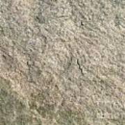 Grey Rock Texture Art Print