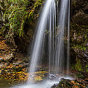 Grotto Falls Great Smoky Mountains Art Print by Pierre Leclerc Photography