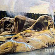 Grotto Geyser Yellowstone Np 1928 Art Print