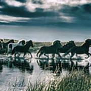 Group Of Horses Crossing A River Art Print