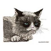 Grumpy Pussy Cat Art Print by Jack Pumphrey