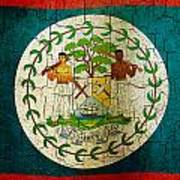 Grunge Belize Flag  Art Print