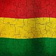 Grunge Bolivia Flag Art Print