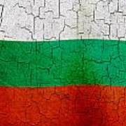 Grunge Bulgaria Flag Art Print