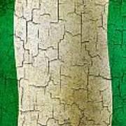 Grunge Nigeria Flag Art Print