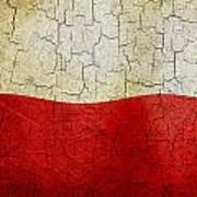 Grunge Poland Flag Art Print