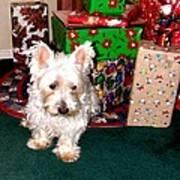 Guarding Christmas Art Print