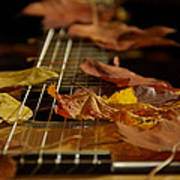 Guitar Autumn 2 Art Print