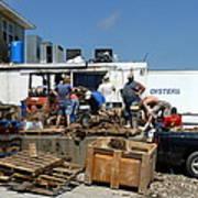 Gulf Coast Oyster Industry Art Print