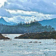 Gull Island Rookeries In Kachemak Bay-alaska Art Print