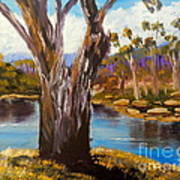 Gum Trees Of The Snowy River Art Print