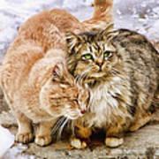 Gutter Kitties Five Art Print
