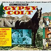 Gypsy Colt, Us Lobbycard, Center Art Print
