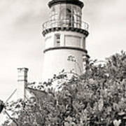 Haceta Head Lighthouse 2 Art Print