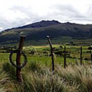 Hacienda El Porvenir Ranch View Art Print