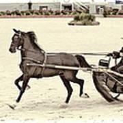 Hackney Pony Cart Art Print