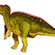 Hadrosaurus Art Print