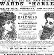 Hair Restorative, 1891 Art Print