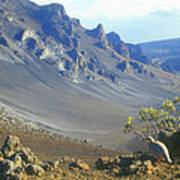 Haleakala Volcano And Chukar Maui Hawaii Art Print