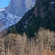 Half Dome - Yosemite Art Print