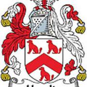 Hamlin Coat Of Arms Irish Art Print