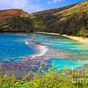 Hanauma Bay In Hawaii Art Print