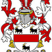 Handcock Coat Of Arms Irish Art Print