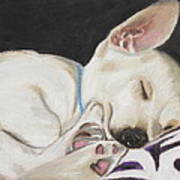 Hanks Sleeping Art Print