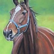 Hanover Shoe Farm Horse Art Print