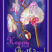 Happy Birthday Orchid Art Print