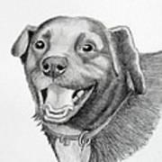 Happy Dawg Art Print