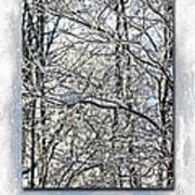Happy Holidays Greeting - Icicles On Trees Art Print