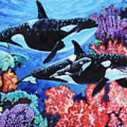 Happy Life of a Killer Whale Art Print