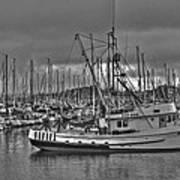Harbor And Marina Monterey 2 Art Print