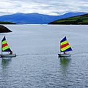 Harbour Sailing Art Print