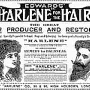 Harlene For The Hair, 1897 Art Print