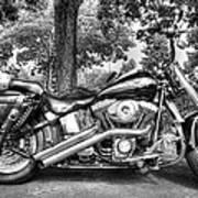 Harley D. Iron Horse Art Print
