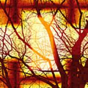 Harmonious Colors - Sunset Art Print