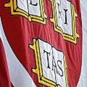 Harvard Veritas Banner Art Print