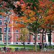 Harvard Yard Fall Colors Art Print