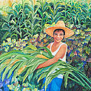 Harvest Magic Art Print